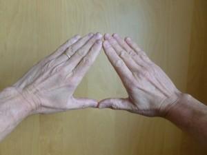 Qigong Earth hand posture - back.
