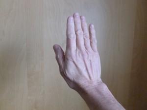 Qigong Fire hand posture - back