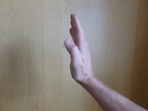 Qigong Fire hand posture - side.