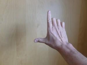 Qigong Metal hand posture - back.