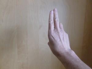 Qigong Wood hand posture - back.