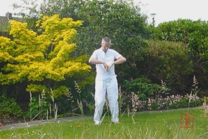 From our Online Qigong course - the extraordinary meridians qigong