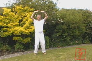 Qigong Course Reviews From the Eight Exceptional Vessels Qigong