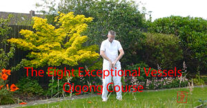 The Eight Exceptional Vessels Qigong course