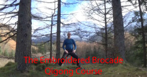 The Embroidered Brocade Qigong course