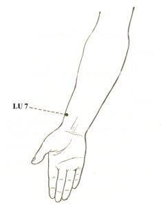 8V_LU7