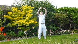 Online qigong courses - eight exceptional vessels qigong