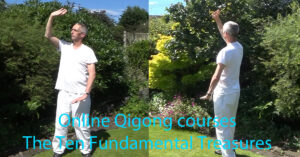 Online Qigong - the Ten Fundamental Treasures course