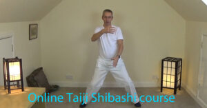 Online course - Taiji Shibashi Qigong